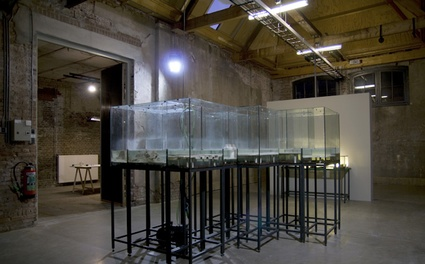 laboratoryplausibilit8.jpg