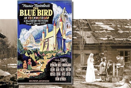 Blue Bird, The)_03