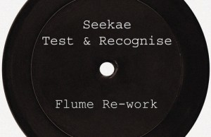 SEEKAE - TEST & RECOGNISE FLUME RE WORK FREE DOWNLOAD FUTURE CLASSIC ZIPPY