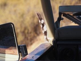 Veer auto londi bushmans kloof