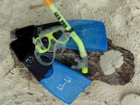 Pulau perhentian snorkelen