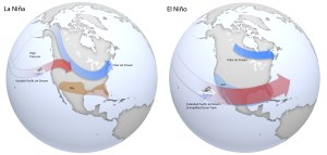 Cool-season impacts of El Niño (via NOAA).