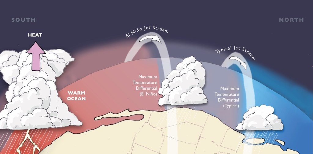 Tropical Pacific warming during El Niño increases the north-south temperature differential, strengthening/shifting the jet stream southward and bringing increased California winter precipitation. Illustration by Emily Underwood.