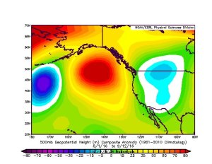 An anomalous ridge has returned to the North Pacific in recent weeks. (NCEP via ESRL plotter)