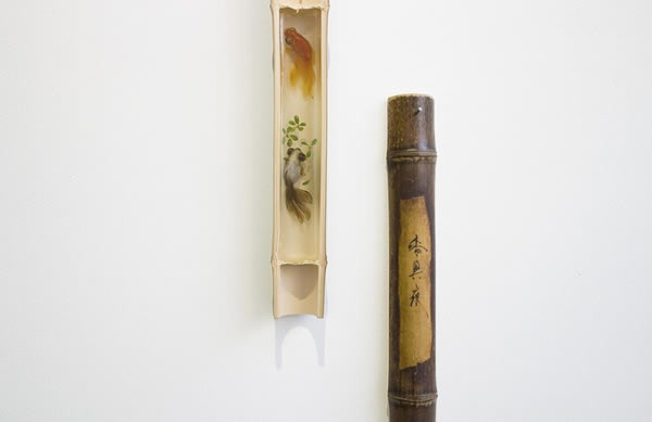 pinturas-goldfish-hiperrealistas-riosuke-fukahori-05