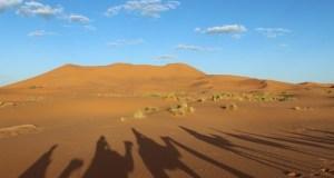 sahara-188683_640