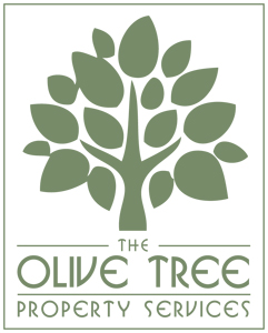 The-Olive-Tree