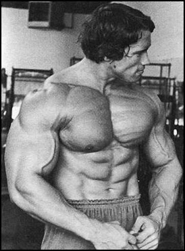 Arnold: Alpha male, or … girly man?