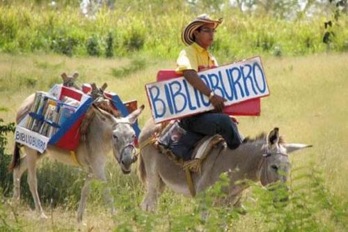 Burro Misandry