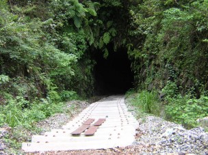 Generic Tunnel
