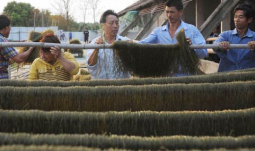 fake4 noodles 500x296 The 9 Most Controversial Food Scandals in China picture