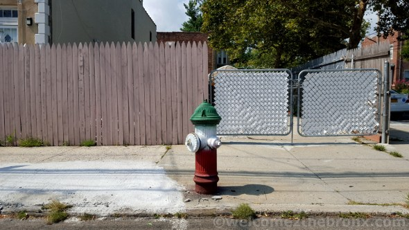 One of the many fire hydrants painted in the colors of the Italian flag as well as on streets and light posts, it represents a community that was once the vast majority but now is one of the many that live and work in this neighborhood of our borough.