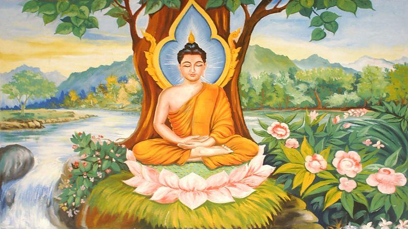 Path to wisdom