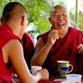 Laughing Buddhist Monk