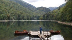 Exploring the Untouched Forests of Montenegro