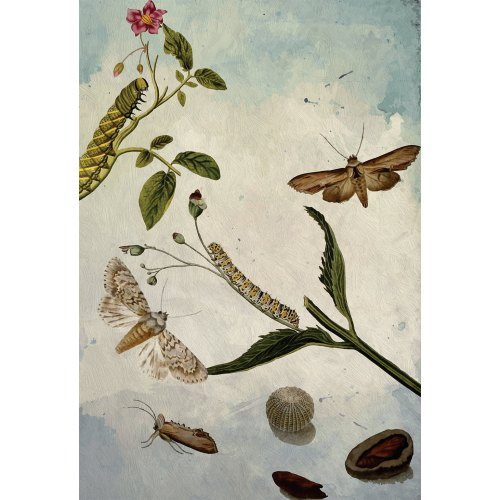 Medium Crop Of Butterfly Wall Decor