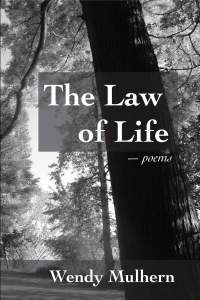 Law of Life coverpic1