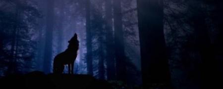 howlwolf