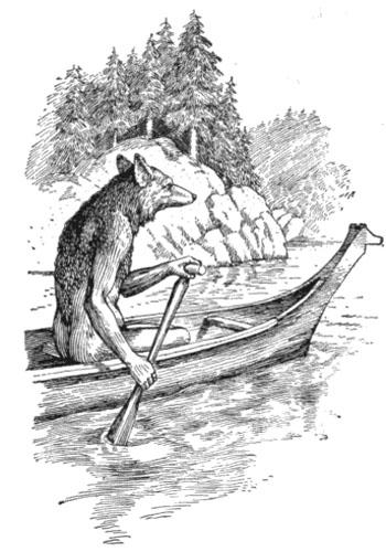coyotecanoe
