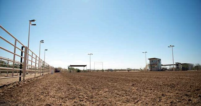 At the Walking N Arena in Casa Grande, ropings are underway almost every say of the week.