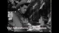 Adventures-of-Champion