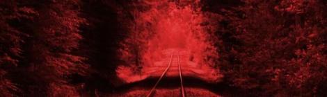 Marcus Hobbs - Der letzte Zug (BOD Verlag)