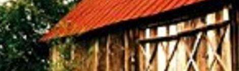 Wolfgang Schweiger - Ein Dorf in Angst (Pendragon)