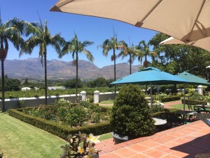 Bosman's Grand Roche View from terrace Whale Cottage