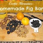 Cookie Alternative: Fig Bar Recipe