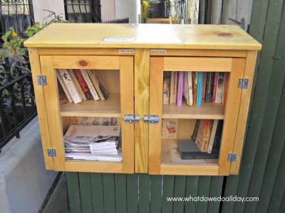 Mini Lending Library