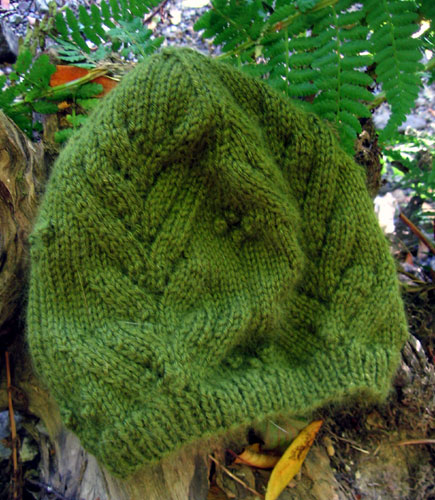 Hat and ferns