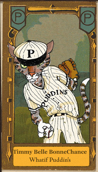 Timmy's baseball card