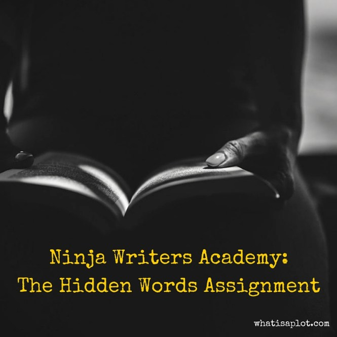Ninja Writers Academy-The Hidden Words Assignment