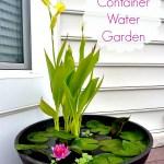 diy container water garden, diy water garden