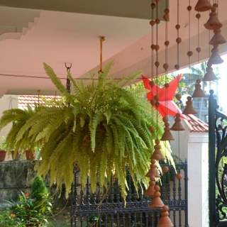 Interior Design Ideas Indian Style