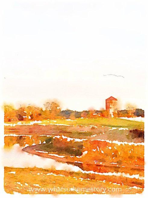 Waterlogue app, Turn Any Photo into Watercolor