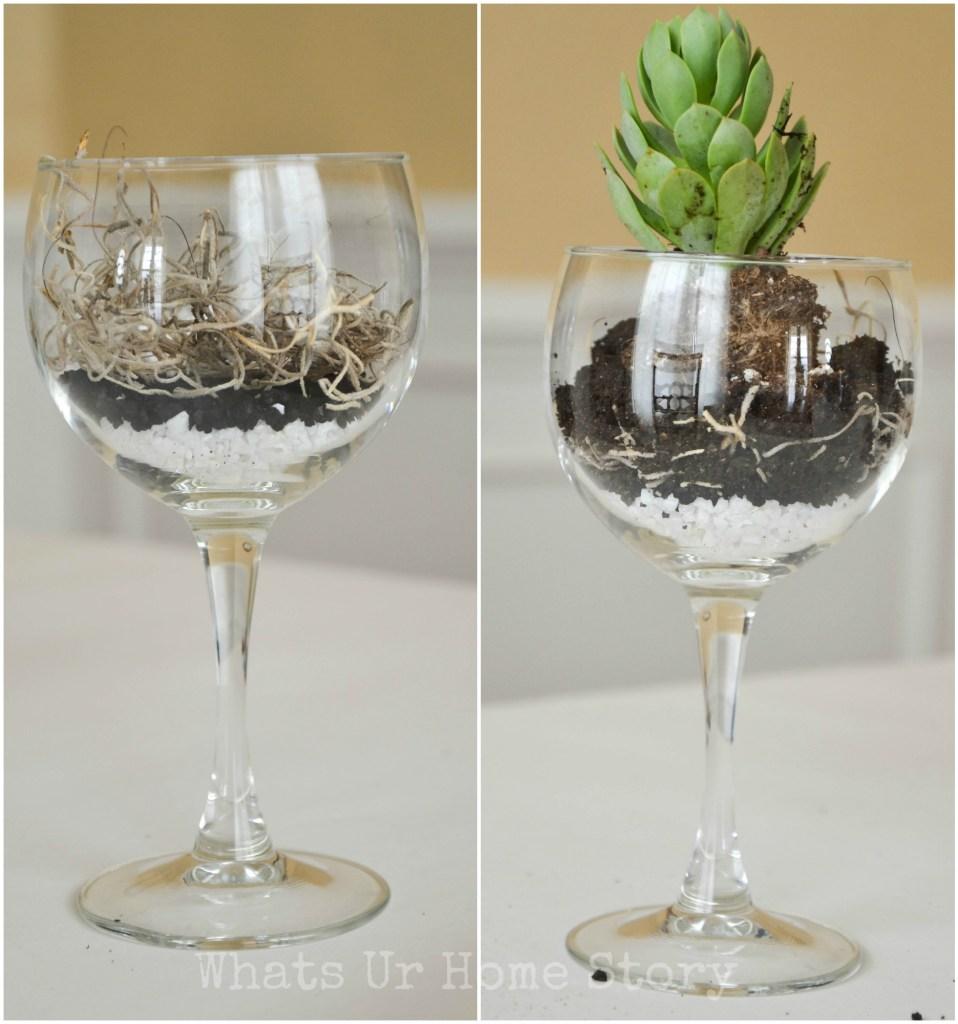 wine glass planter, wine glass succulent planter