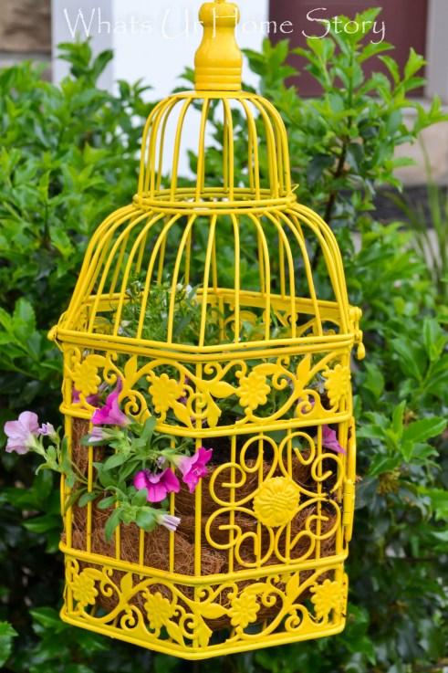 Bird Cage crafts, Bird Cage Planter