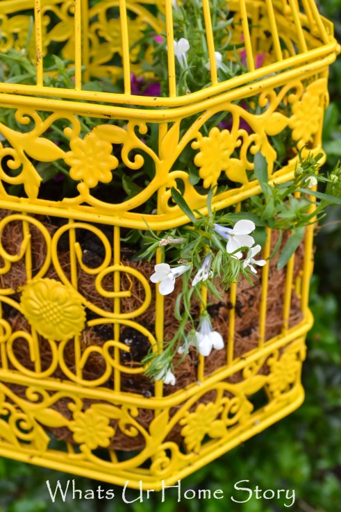 Yellow Bird Cage Planter