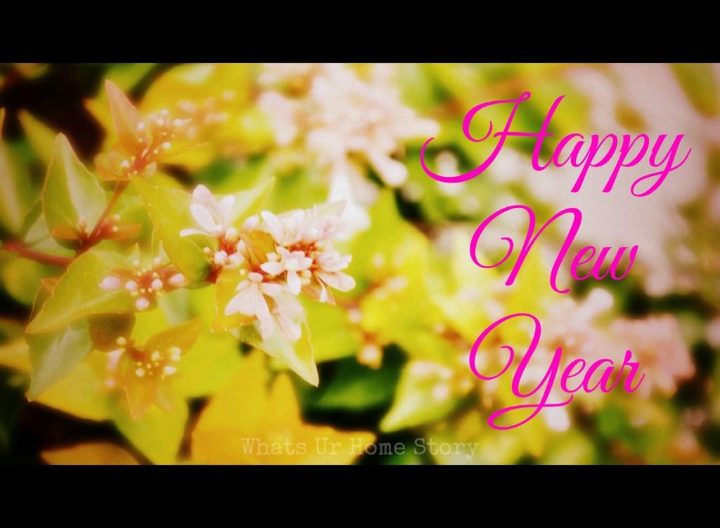 Happy 2015 & 3rd Birthday to WUHS!
