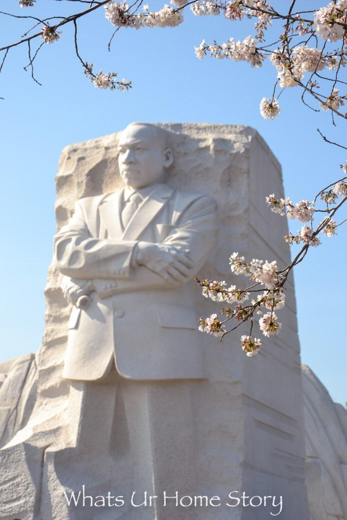 Cherry Blossoms against the Martin Luther King Memorial in DC
