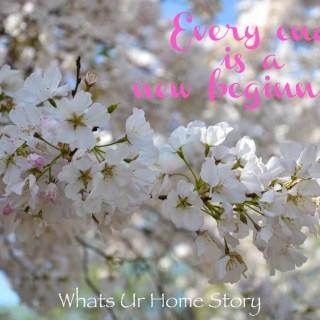 Happy New Year & 5th Blog Birthday!