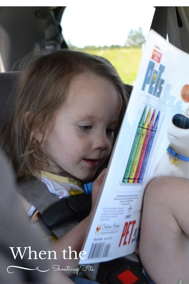 Sticker Books are big fun for little girls! Coloring and reading together is important.