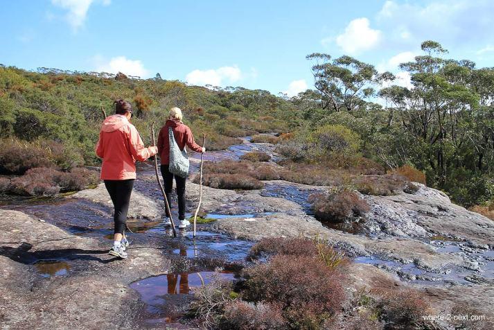 3774-Hiking-the-Budawang-Ranges-to-Mt-Bushwalker-DPI-3774