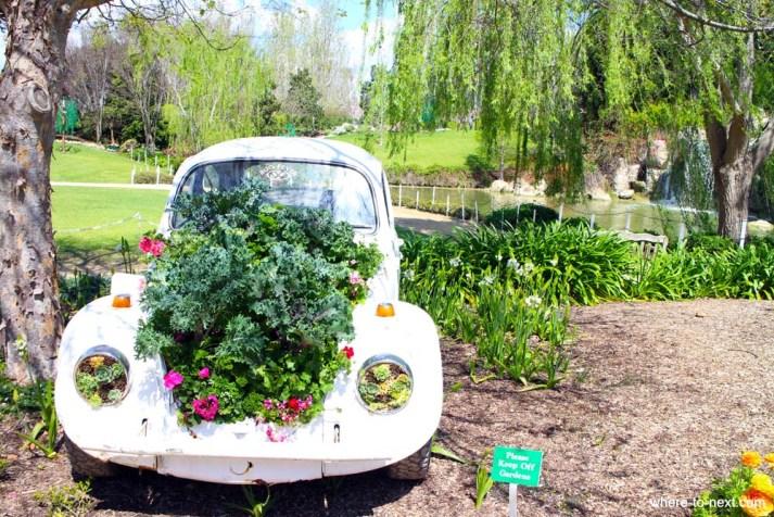 Hunter Valley Gardens VW