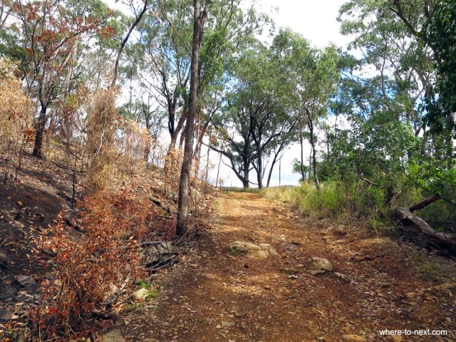 Steep track to top of hill Hunter Valley
