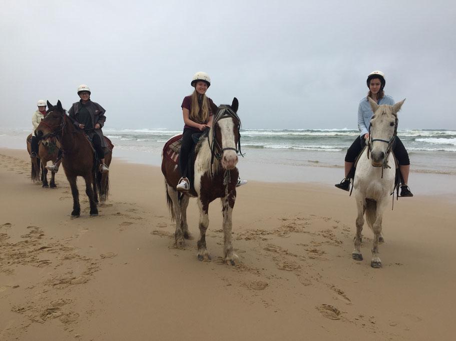 Port Stephens Sahara Horse Trails