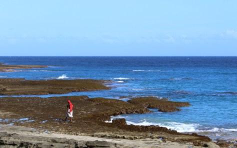 Fiji, Queens Road, Seashore, Photo Romi Cortier