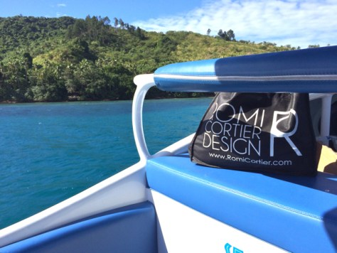 Sea Fiji Reefs, Fiji, Photo Romi Cortier