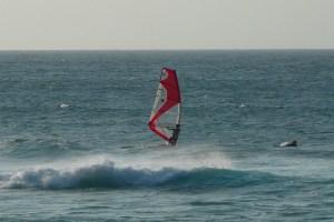Maui 2009324L